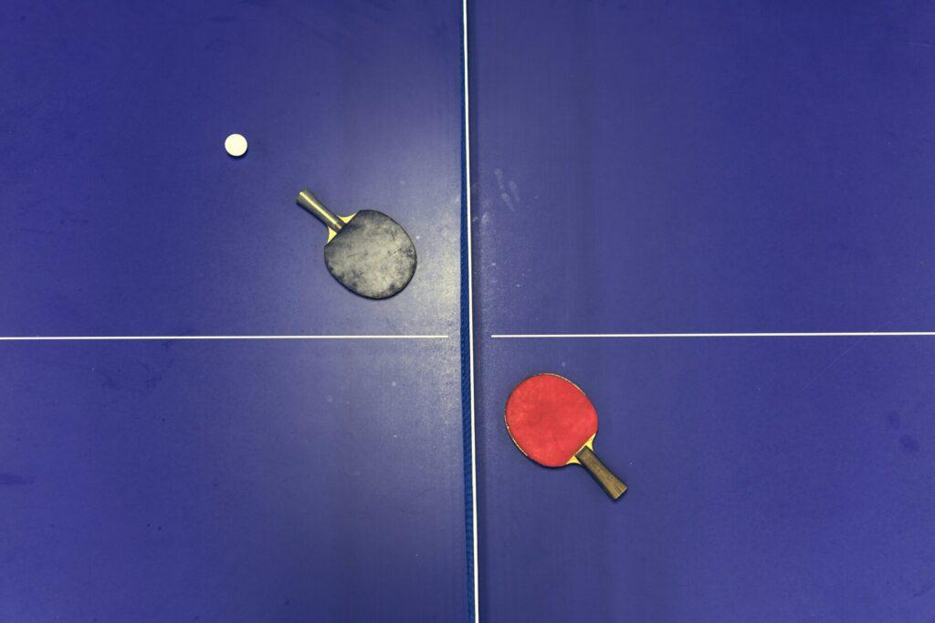 שולחן פינג פונג מקצועי